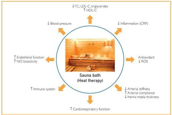 Frequent sauna bathing has many health benefits, new literature review finds