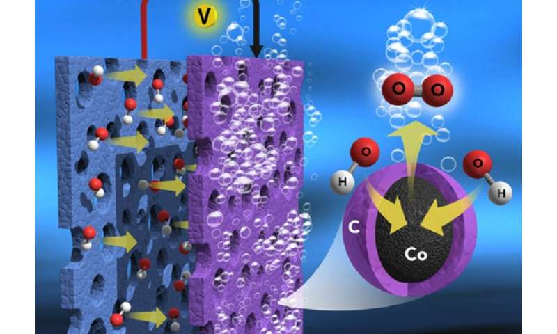 High-efficiency, low-cost catalyst for water electrolysis