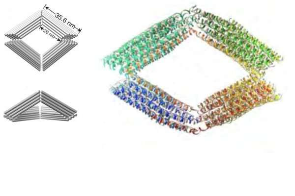 Imaging individual flexible DNA 'building blocks' in 3-D