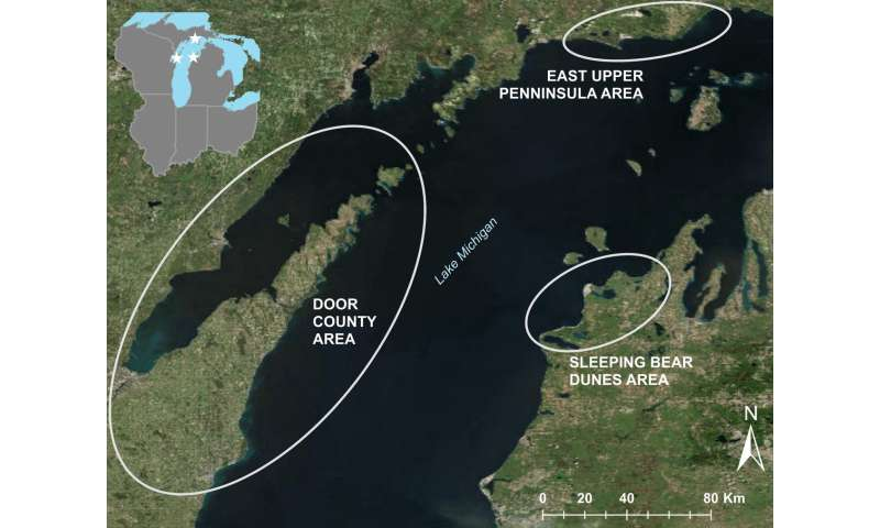 Lake Michigan waterfowl botulism deaths linked to warm waters, algae