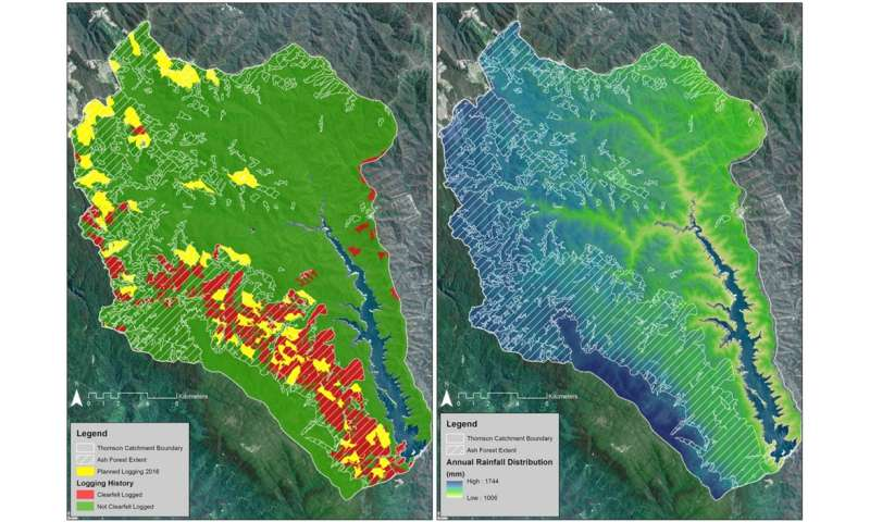 Logging must stop in Melbourne's biggest water supply catchment