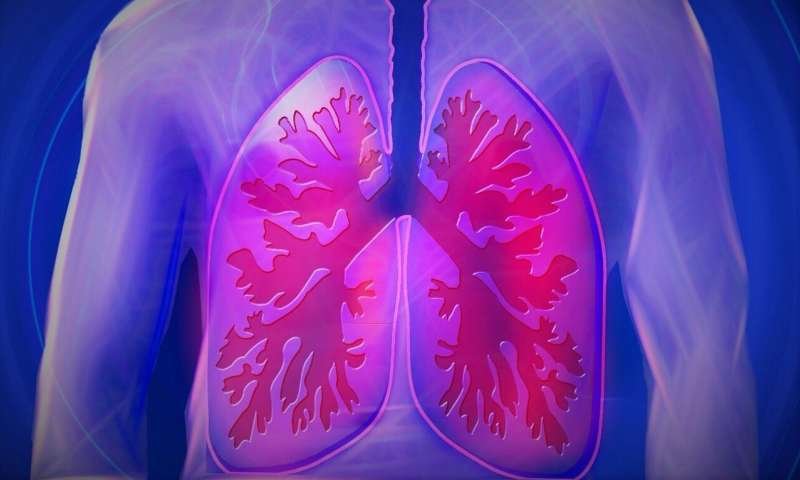 First lung map uncovers new insights into asthma