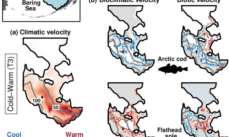 Mapping species range shifts under recent climatic changes