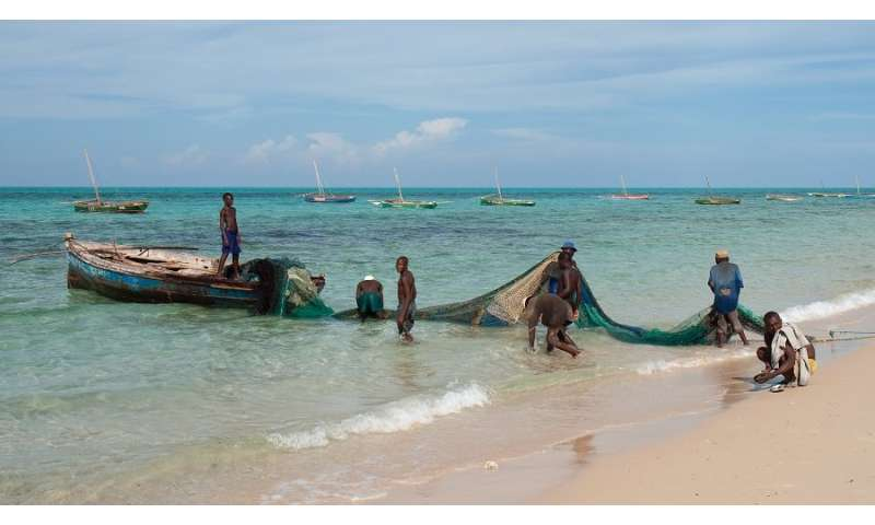 Mistake in fisheries statistics shows false increase in catches