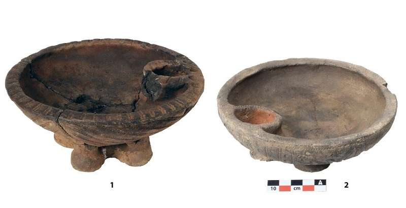 MSU scientists found the seeds of domestic plants in the burial sites of ancient nomads