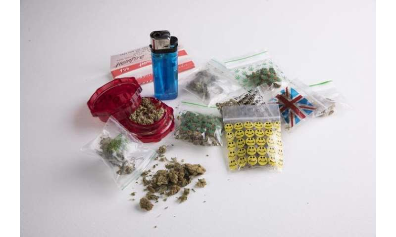 Nearly all cannabis seized by UK police is high-strength 'skunk'– here's why we should be worried