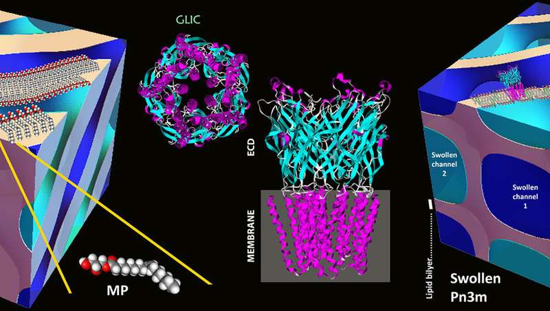 New tool for the crystallisation of proteins