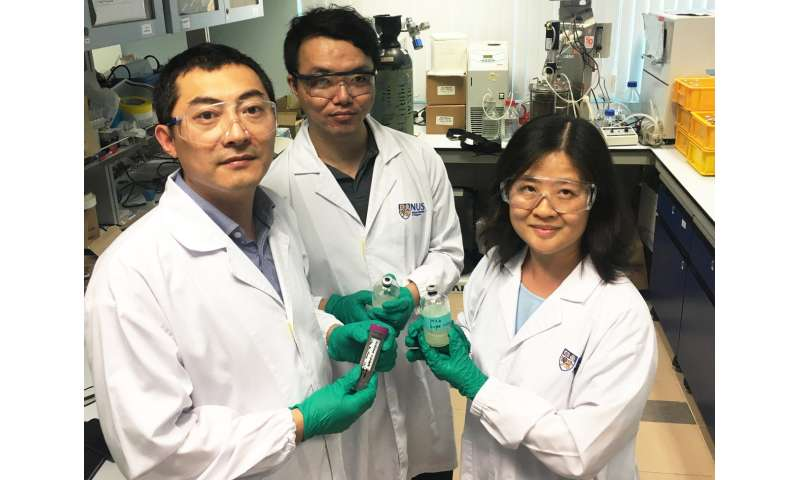 NUS engineers pioneer greener and cheaper technique for biofuel production