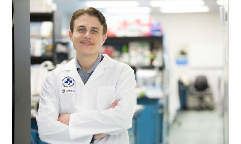 Often-overlooked Natural Killer cells may be key to cancer immunotherapy