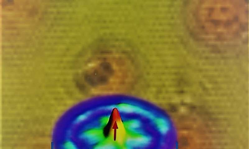 Princeton scientists discover a 'tuneable' novel quantum state of matter