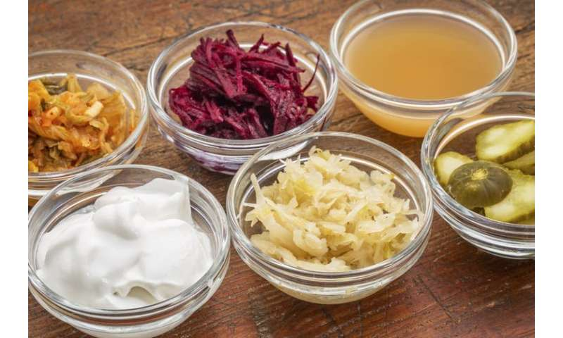 Probiotics and prebiotics – is it safe to use them to treat disease?