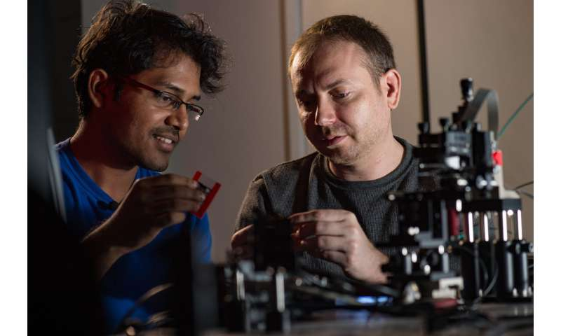 Rice team designs lens-free fluorescent microscope