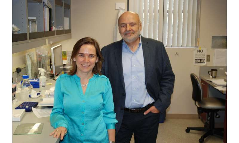 Study finds how fat tissue shunts energy to tumors