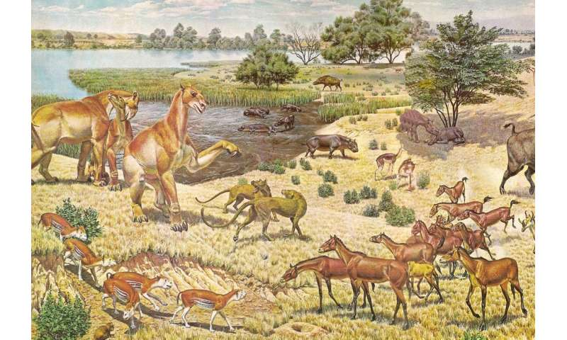 Study: Prehistoric horses were homebodies