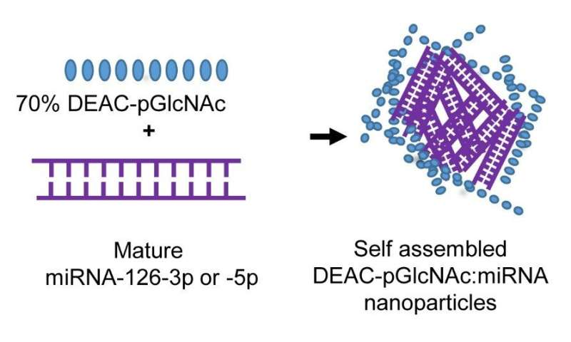 Targeting sepsis, the leading cause of ICU deaths, with a nanocarrier-delivered microRNA