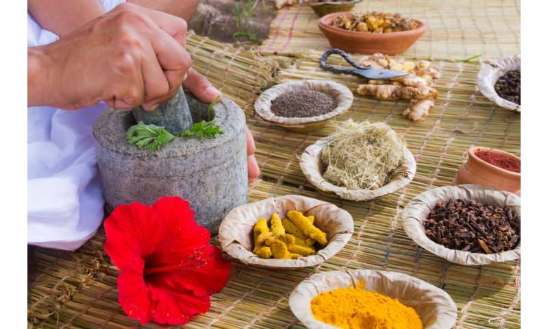 Traditional health claims about India's ayurvedic foods help