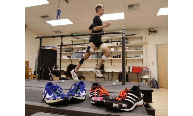 What makes the world's fastest shoe so fast? New study provides insight