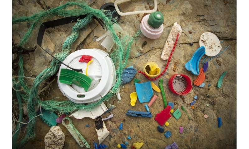 Who is to blame for marine litter?