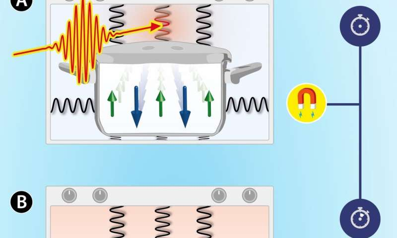 What happens when we heat the atomic lattice of a magnet all of a sudden?