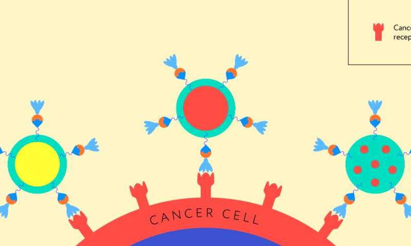 Researchers develop molecular assembly method for cancer therapy and diagnostics