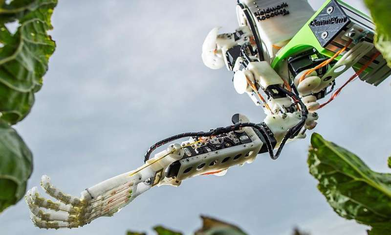 Scientists develop harvesting robots that could revolutionise farming practices