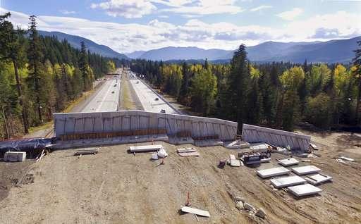 Washington state builds bridge to keep wildlife off highway