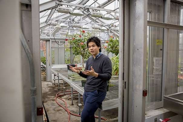 "Researchers develop ""bionic leaf"" for distributed agriculture"