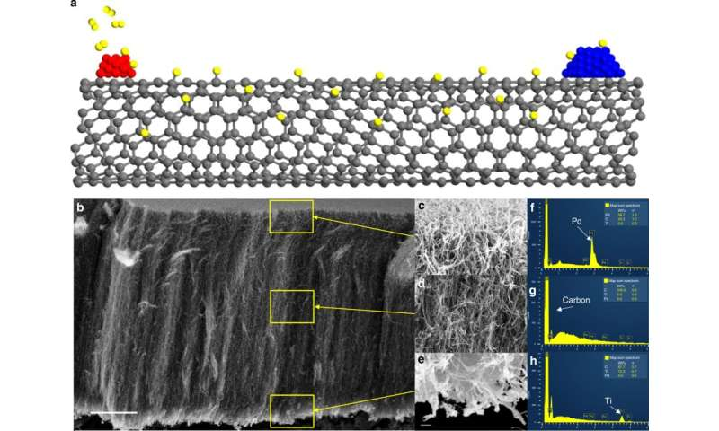 Researchers determine catalytic active sites using carbon nanotubes