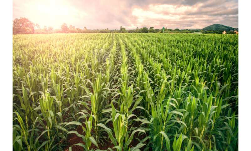 Machine learning used for helping farmers select optimal products suited for their operation