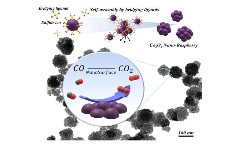 Researchers developed sustainable 'nano-raspberry' to neutralize poisonous carbon monoxide