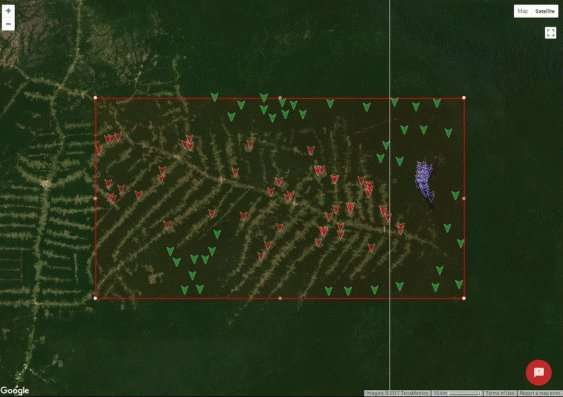 App helps ecologists map vulnerable ecosystems within minutes