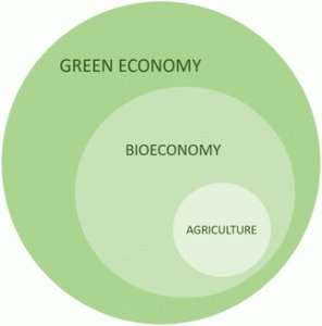 Building a circular bioeconomy with synthetic biology
