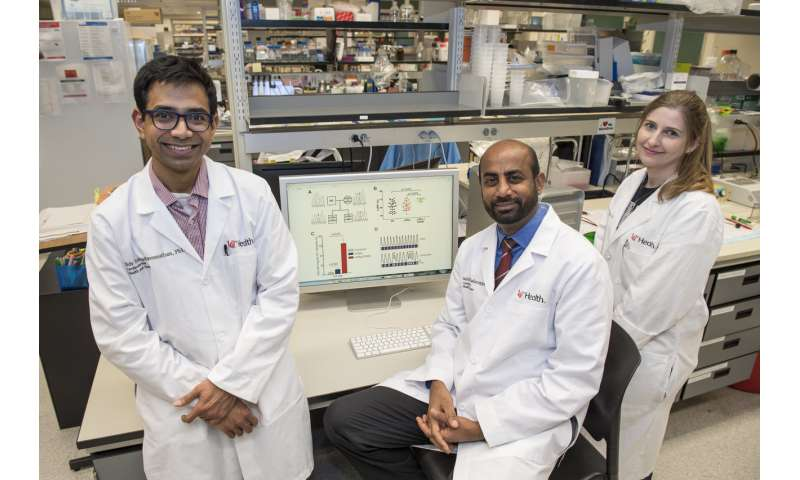 Genetic variant might be a better marker for heart disease