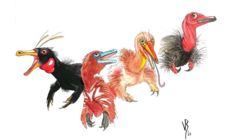 How did alvarezsaurian dinosaurs evolve monodactyl hand?