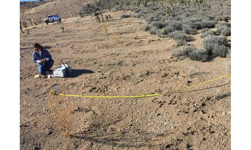 Low-severity wildfires impact soils more than previously believed