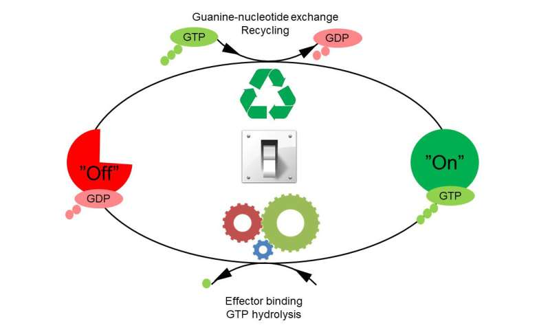 Molecular switches are not just 'on' or 'off'