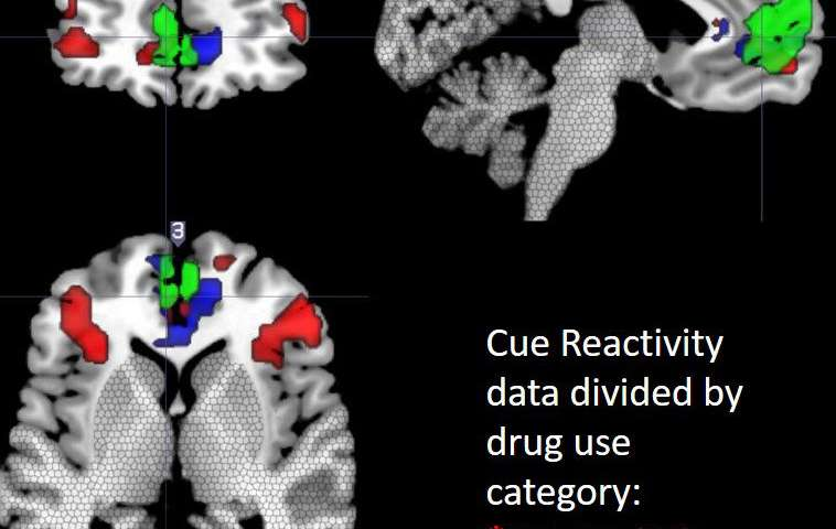 Neuroimaging study reveals 'hot spot' for cue-reactivity in substance-dependent population