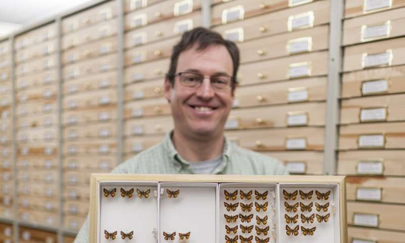 New butterfly species named for Field Museum's Emily Graslie