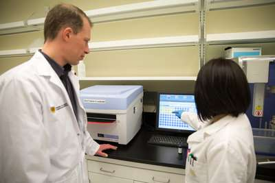 New diagnostic method makes testing for infections in people and animals quick and easy