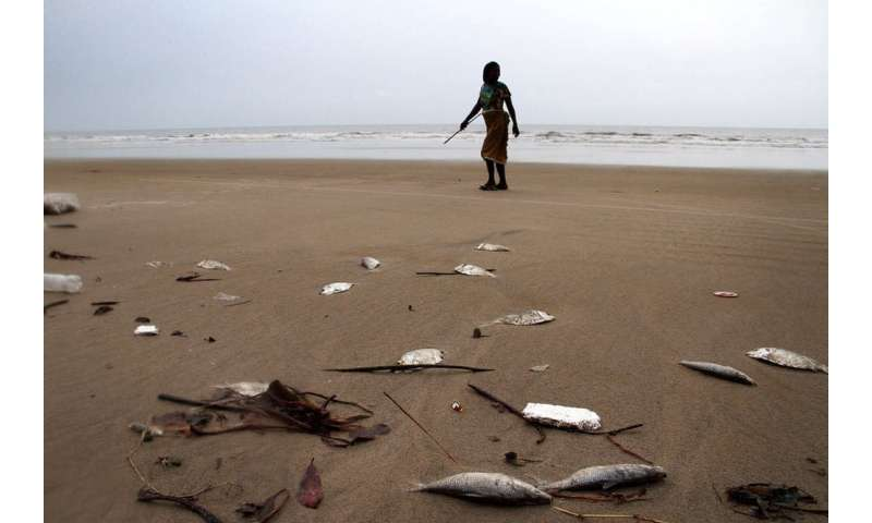 Nigeria's depleting fish stocks may pose a threat to regional security
