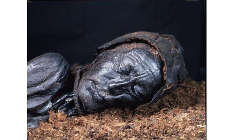 No evidence that Europe's bog bodies were gay