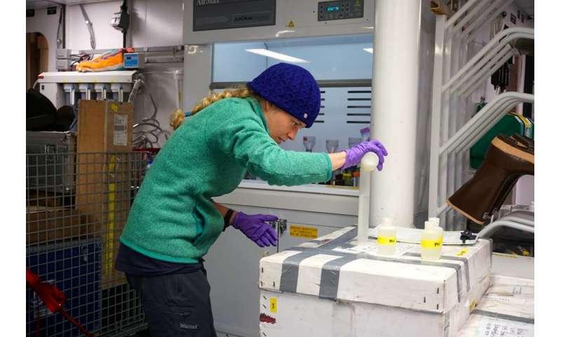 Ocean fertilization by unusual microbes extends to frigid waters of Arctic Ocean