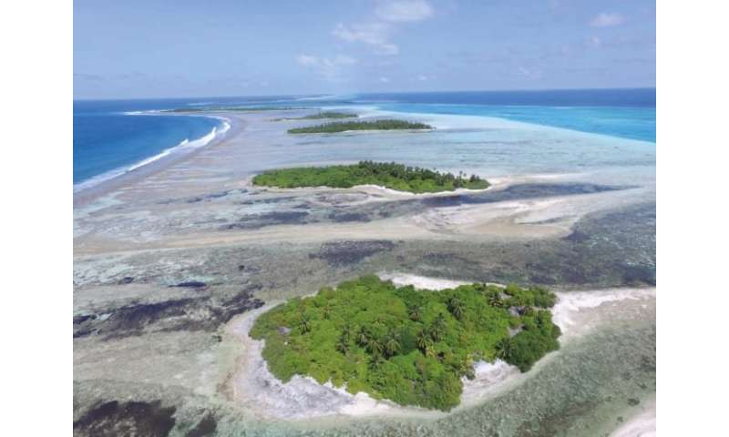 Rising sea levels may build, rather than destroy, coral reef islands