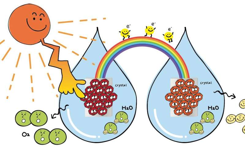 Seeing the light: Researchers offer solution for efficiency problem of artificial photosynthesis