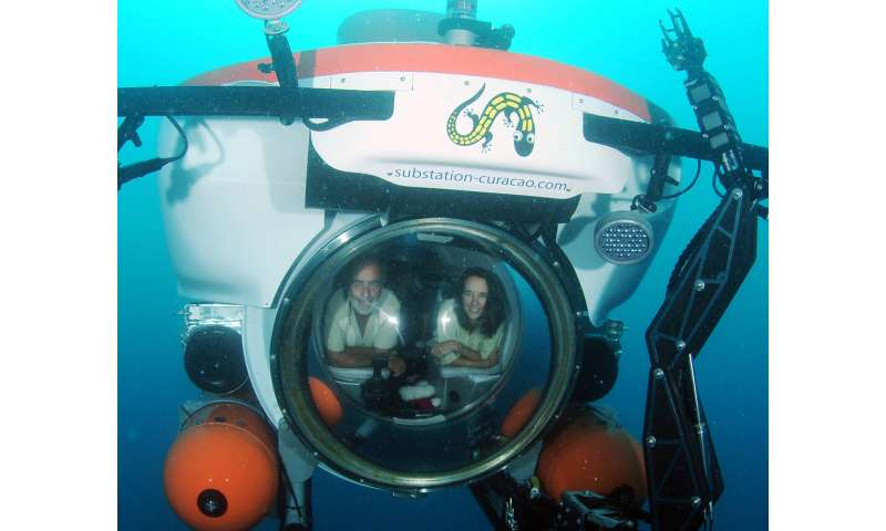 Smithsonian researchers name new ocean zone: The rariphotic