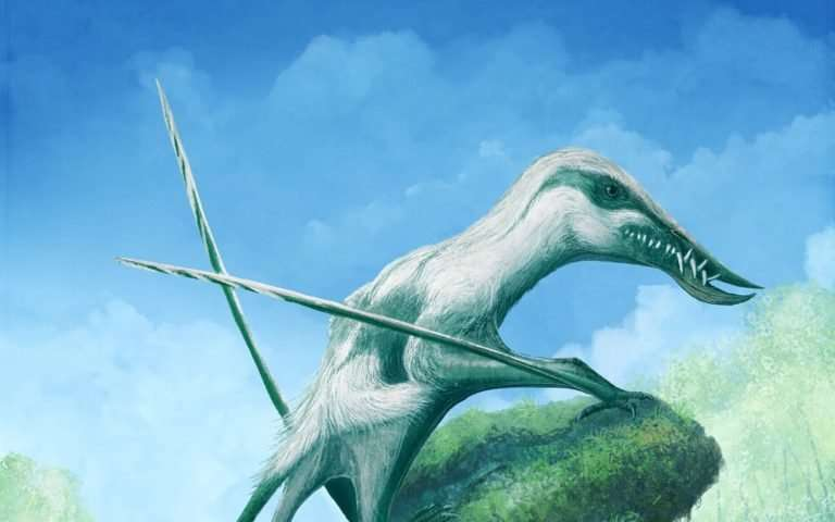 Spectacular flying reptiles soared over Britain's tropical Jurassic past