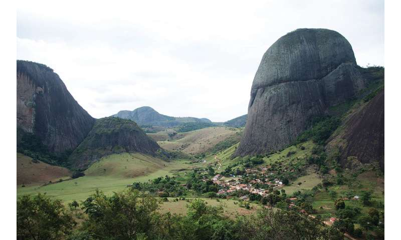 Sticky and heavily armed, a tomato-relative is the new 'star' of the Brazilian inselbergs