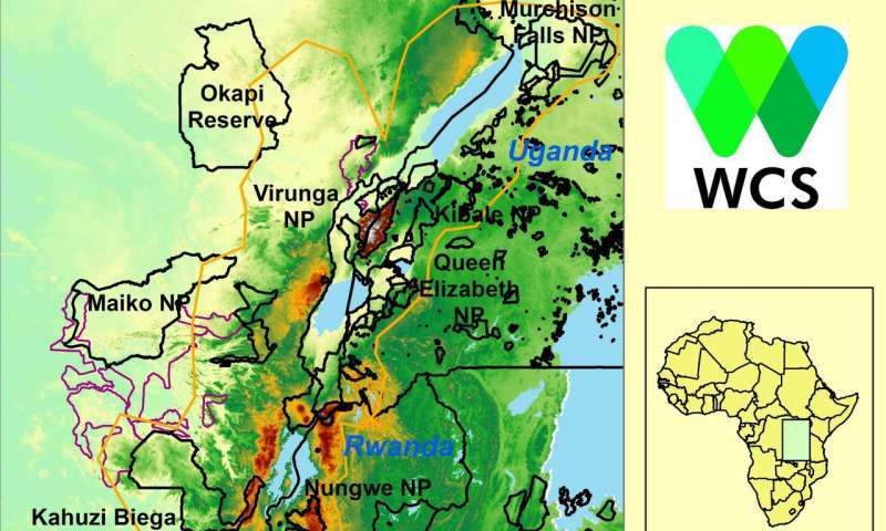 Study predicts wildlife of Africa's Albertine Rift will be threatened by climate change
