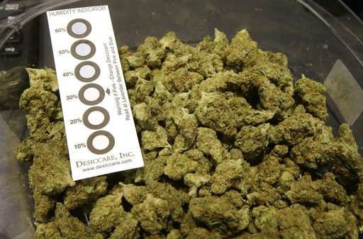 What to expect as 1st pot shops in East finally open