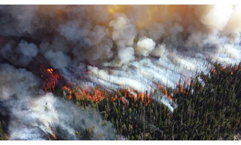 Could wildfires be contributing to heart disease?